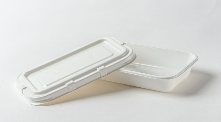 Disposable Airplane CPET Trays