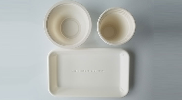 Corn Starch Tablewares Set