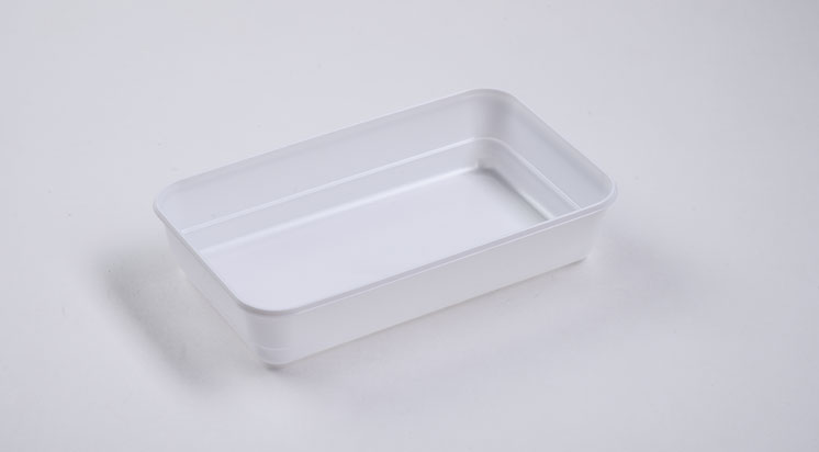 Disposable Plastic Dish/Plate