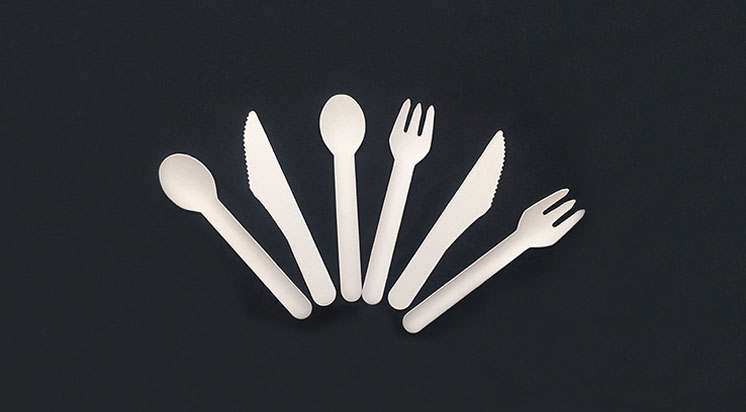 Paper Cutlery