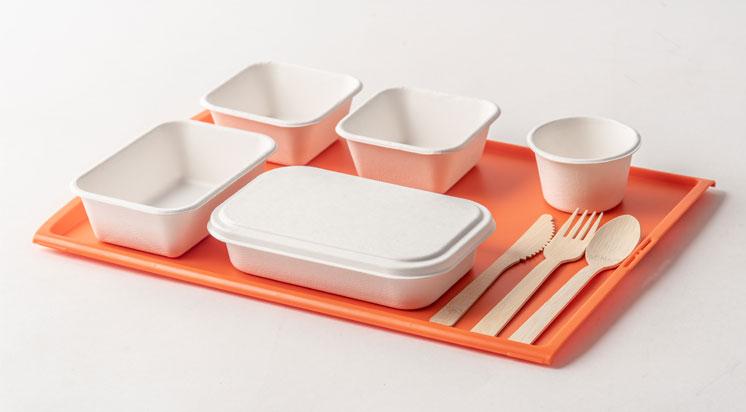 bagasse-tableware.jpg